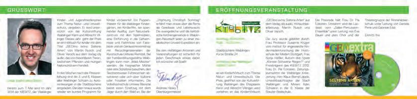 Grafik Waiblinger Kiebitz 02