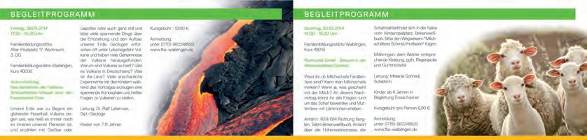 Grafik Waiblinger Kiebitz 05