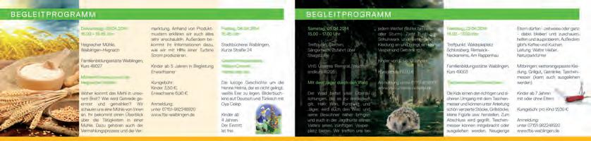 Grafik Waiblinger Kiebitz 06
